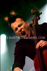 Apocalyptica - Pinkpop 2005 by bartje-