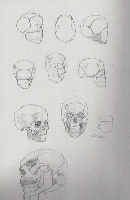 [Image: studies_mai_01_by_cyprinusfox-d7j38jq.jpg]