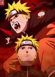 Naruto And Naruto Kyuubi