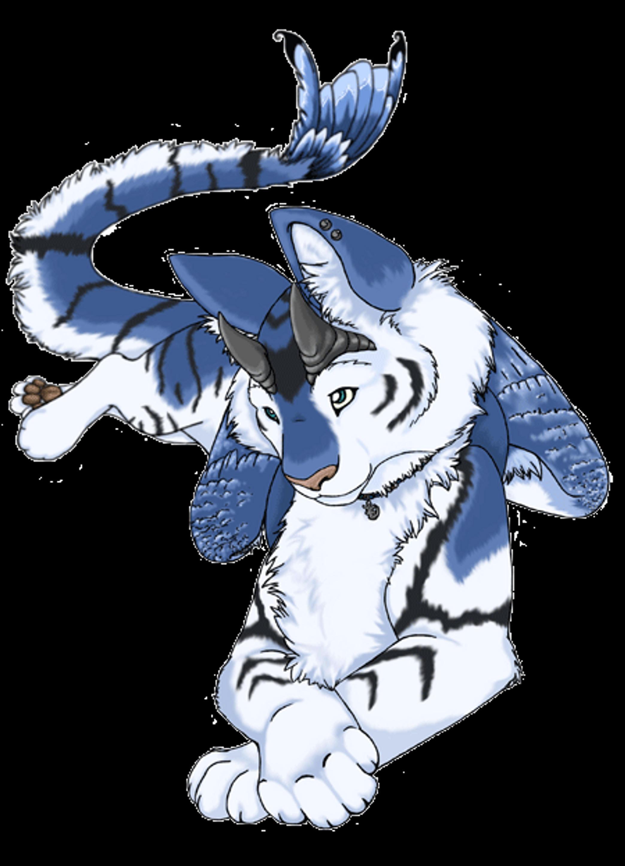 Saborcat's Profile Picture