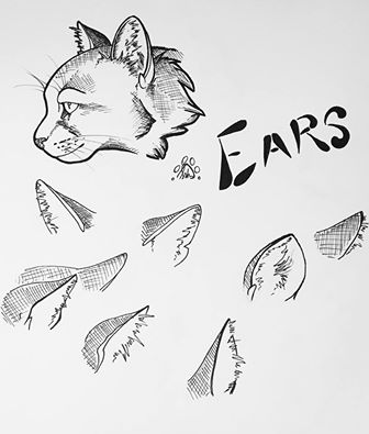 Ears! by Saborcat