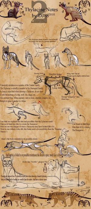 Thylacine Notes 2