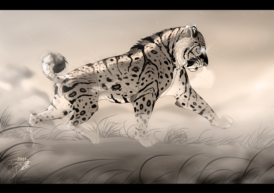 Image Result For Tiger Drawings