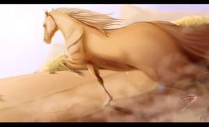 Horse Run by DJ88