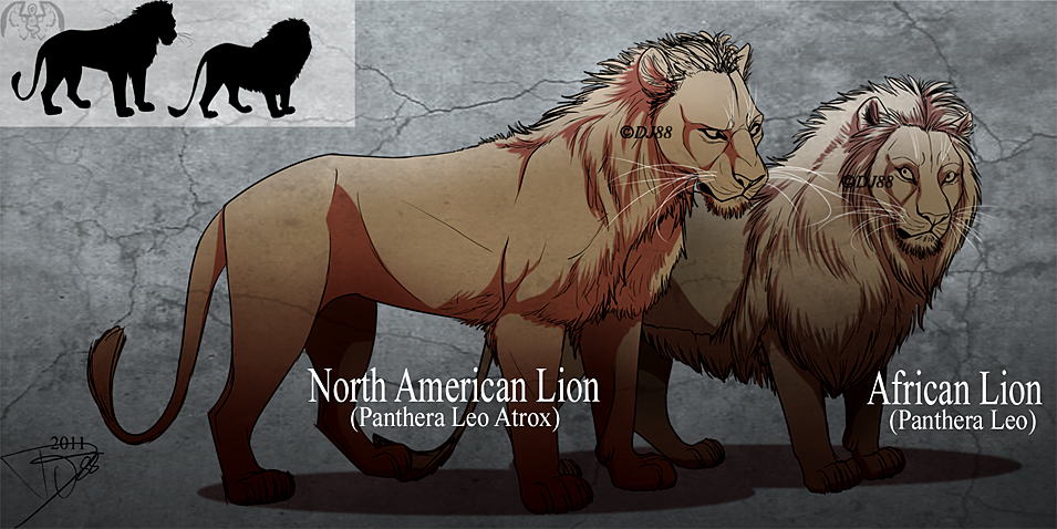 Lions by DJ88 on DeviantArt