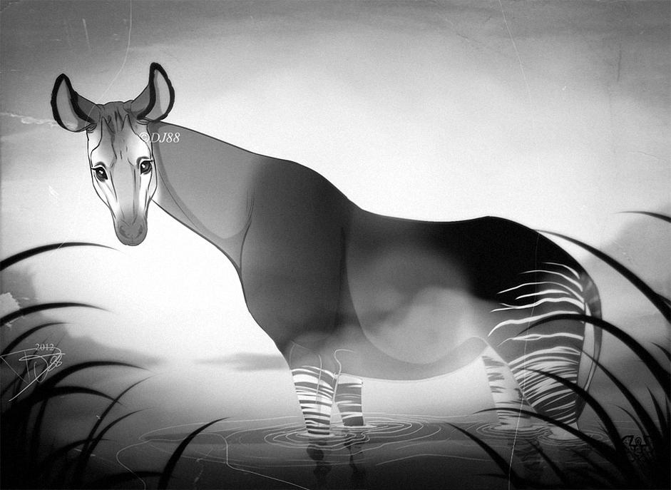 Okapi Serenity by DJ88