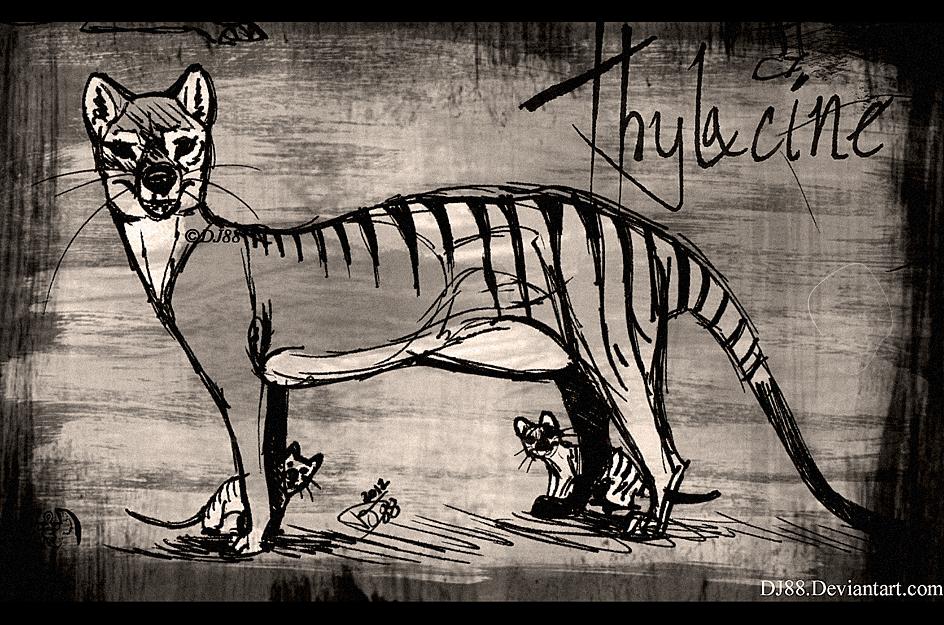 Thylacine Pen 2-Mother n Pups by DJ88