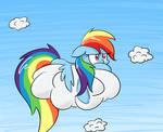 Dashie's cloud