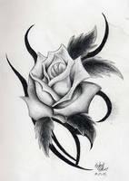 Rose by freakymonkey