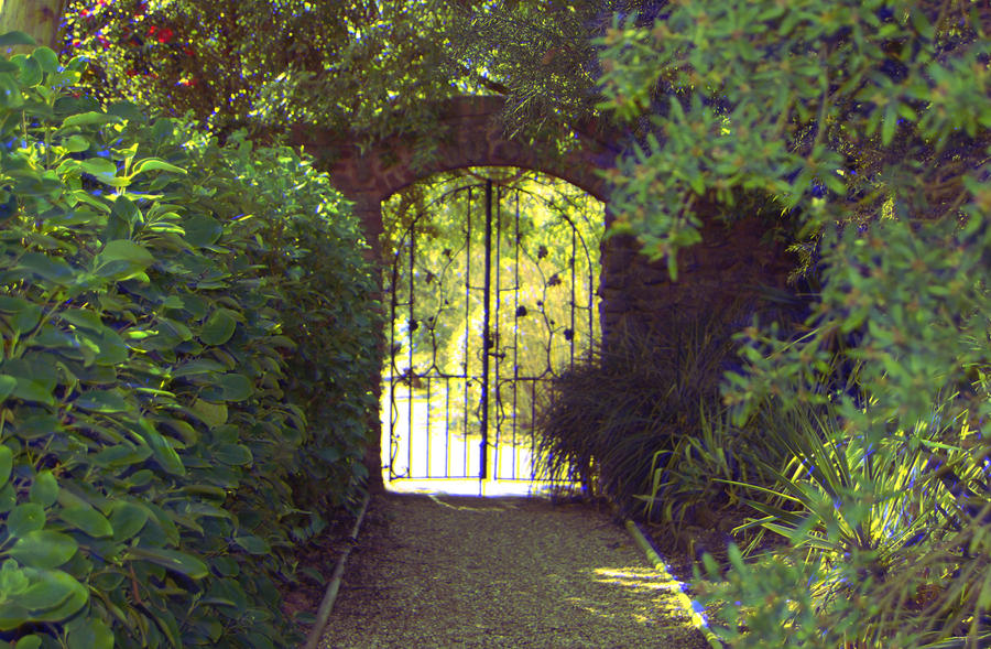 Secret garden 3d by dgym on deviantart for My garden 3d