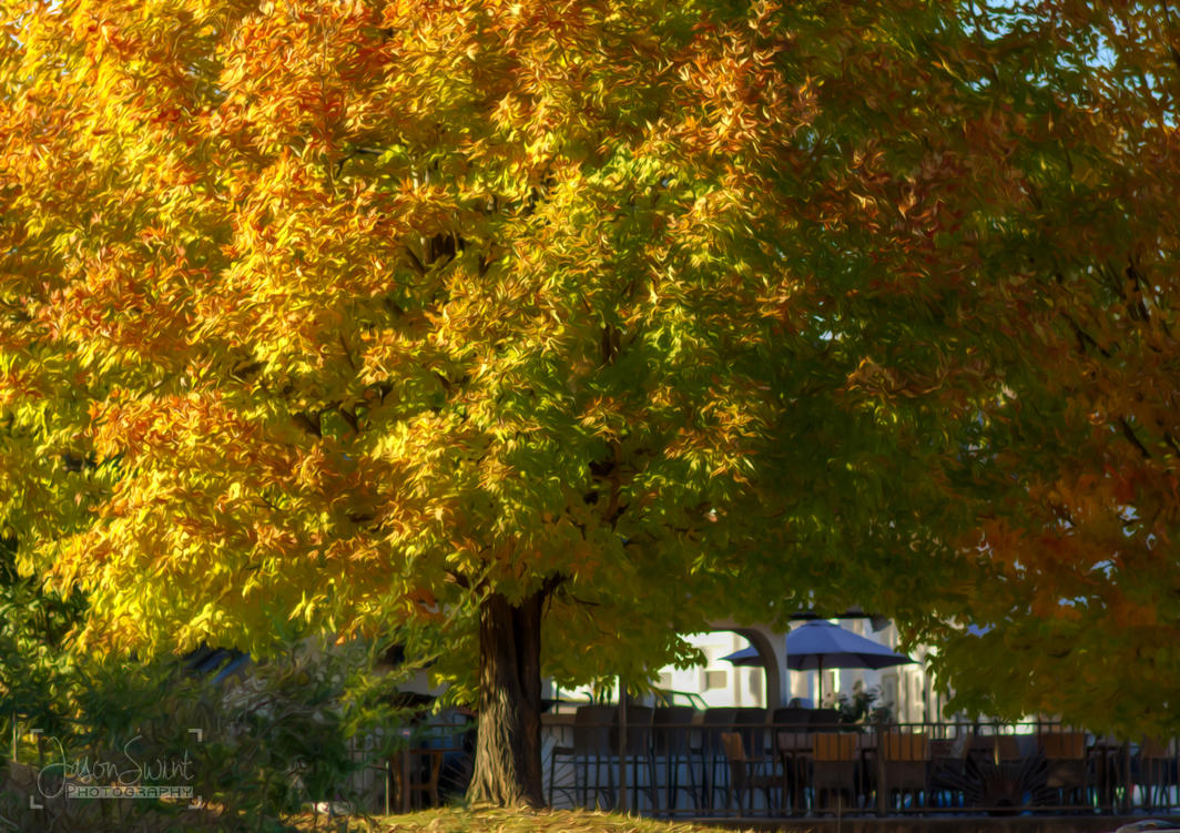 Fall in Murphy, NC by jasonswint