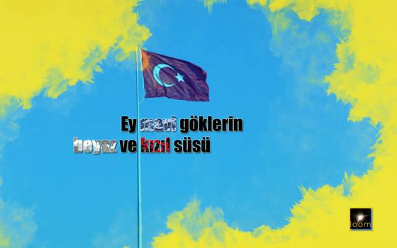 Turkish Flag Wallpaper