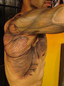The Visible Shoulder