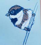fountain pen bird sketch