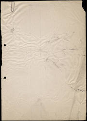 Grungy paper texture v.13