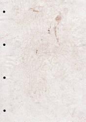 Grungy paper texture v.16