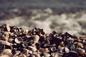 On the Beach by Apsalaar