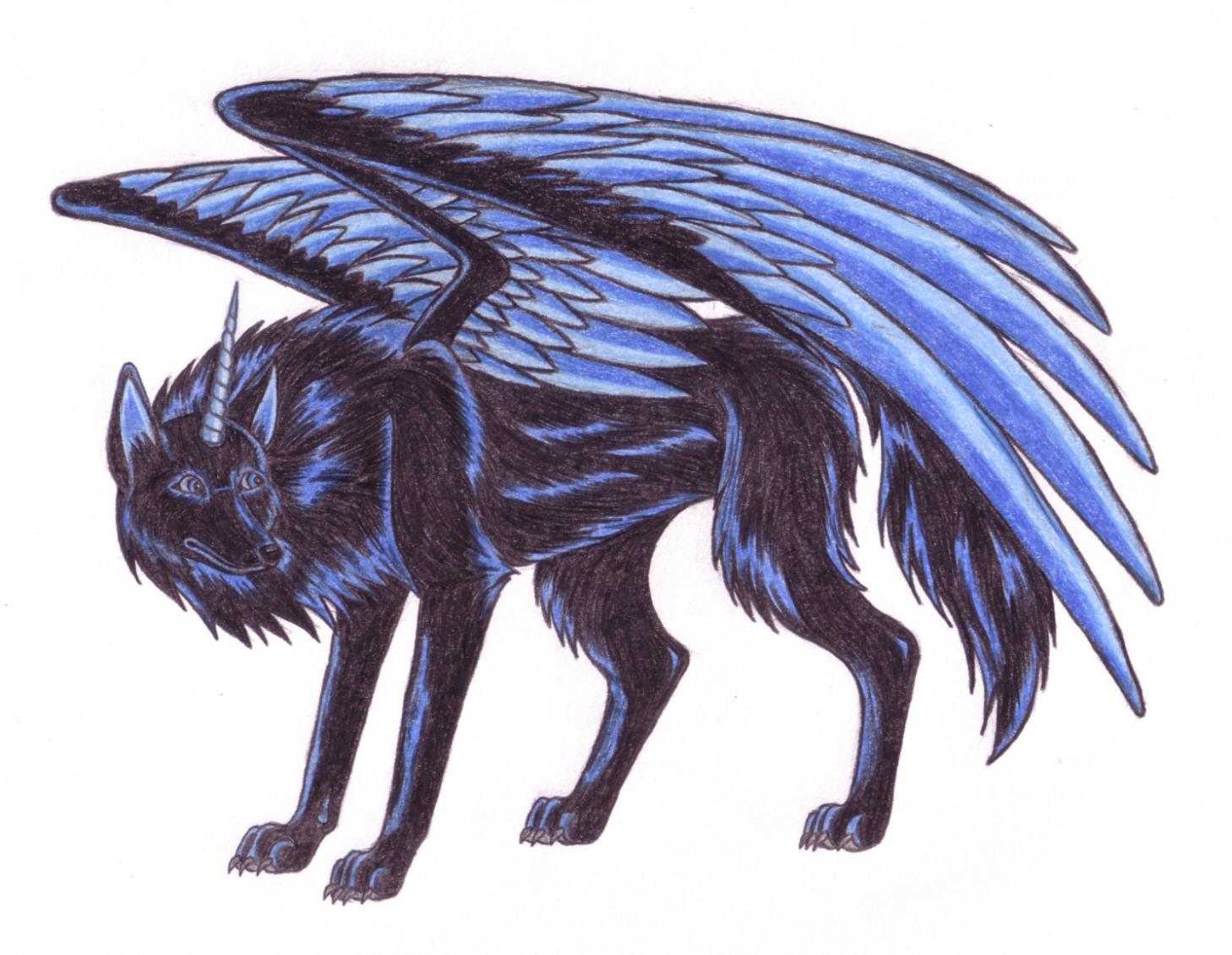 saphir wolf of darkness by wolfofdarkness on deviantart