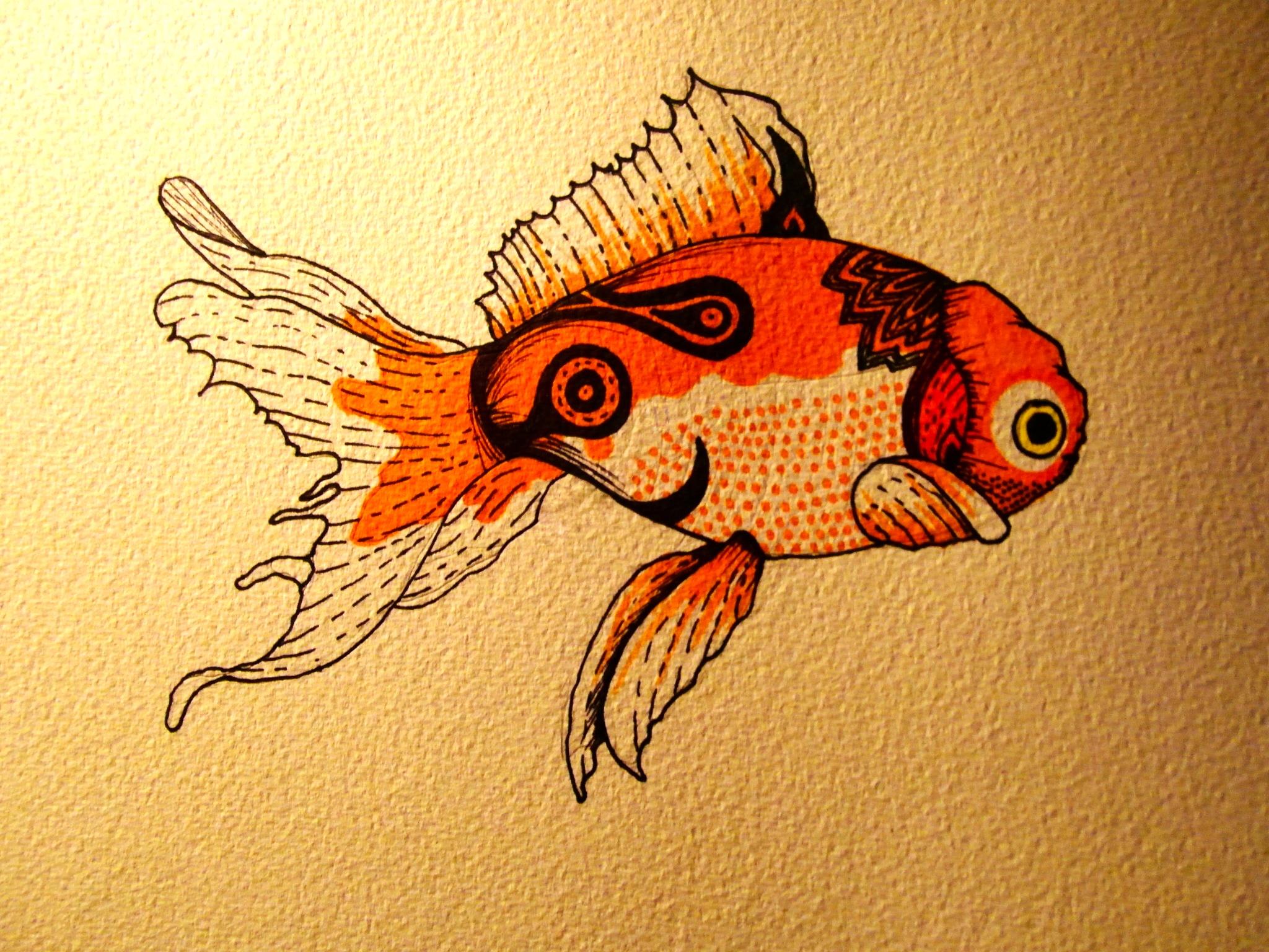 Abstract fish designs - photo#1