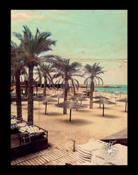 ahla_palms_ by 2a7la