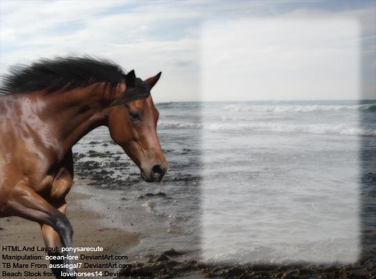 tb mare howrse layoutoceanlore on deviantart, Powerpoint templates