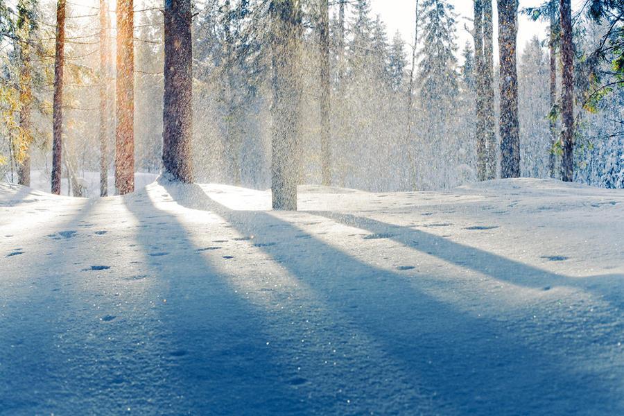Winter light by sampok