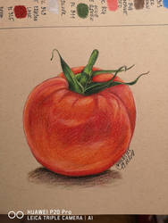 Tomato by Lali-the-Bunny