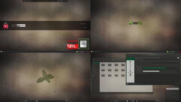 A Linux Mint 13 screenshot (10/20)