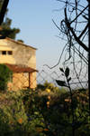 Italian vila