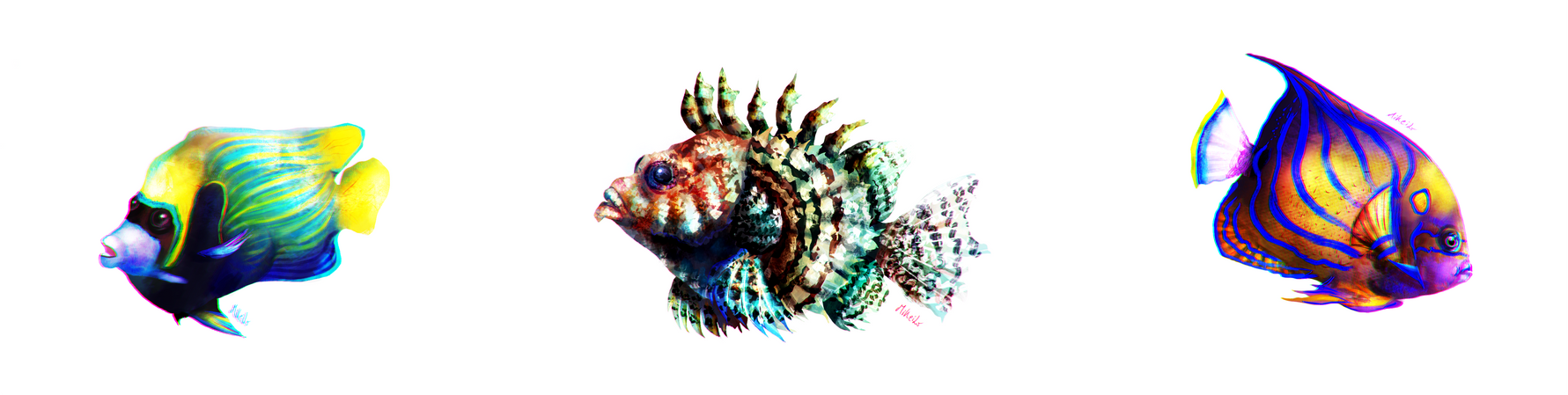 Some fish by MiKeiLo