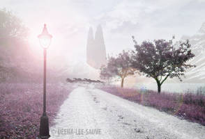 A Light In Winterland by Deena-Lee-Sauve