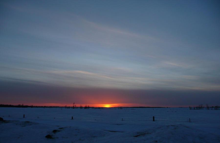 Snowy Sunset by Deena-Lee-Sauve