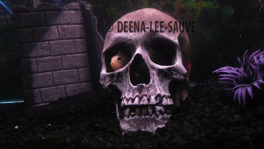 Shy by Deena-Lee-Sauve