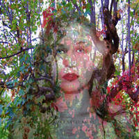 Color Me Crazy by Deena-Lee-Sauve