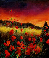 Poppies 56 by pledent