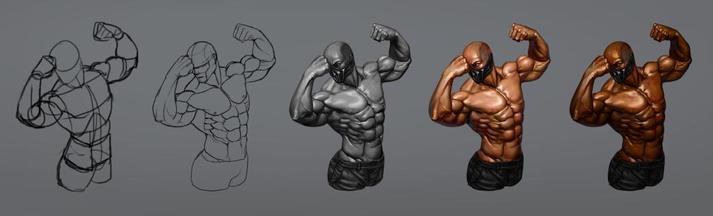 Anatomy Muscle Man Image Collections Human Body Anatomy