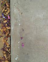 Leaf and Flower Border by EdensForbiddenTree