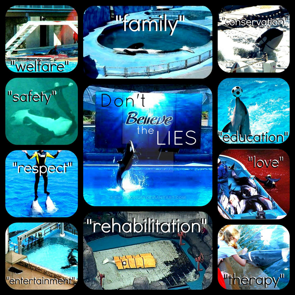 Believe by Thylacinus1