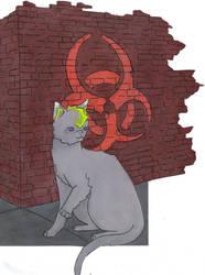 commision.:grey kitten:.