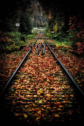 the fall express by straitouttaseymour