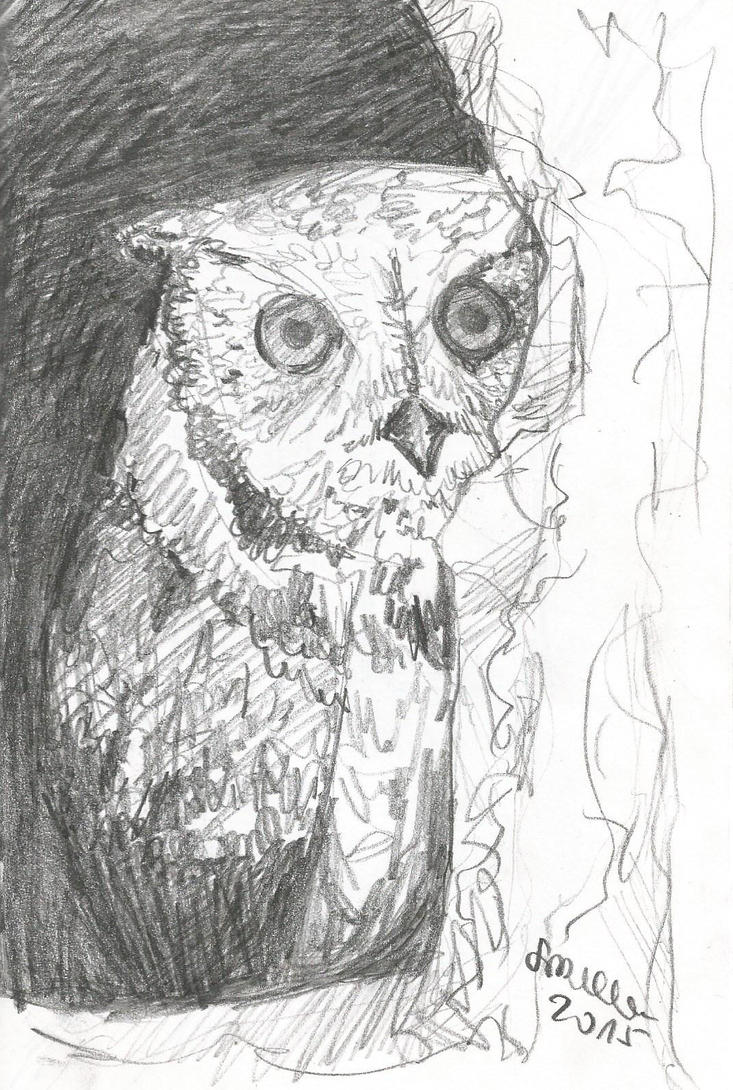 One Creepy STALKER Owl by REMAINfaithful
