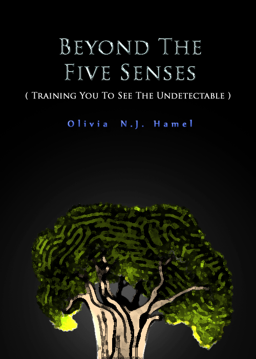 beyond the five senses Looking upwards great rishi's, sages and most noble men from all religions declare that they have found some truth higher than what the five senses bring to us.