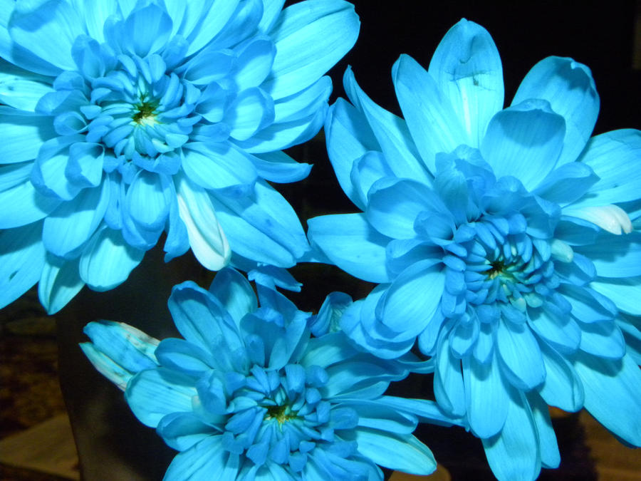 Blue Flowers Tu...