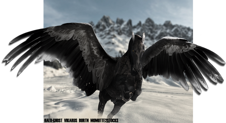 FAIRFAX by Weathered-Raven