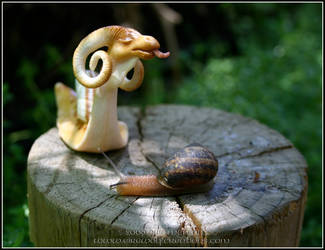 DragonSnail First Sight, snail by EirewolfCreations