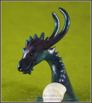 Dragon Snail : Senshi detail