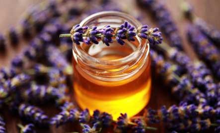 Lavender-honey by TheEchoesOfDarkness