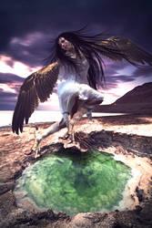 The Harpy by AinoWallen