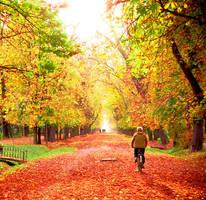 my autumn symphony