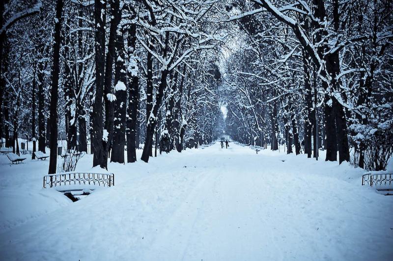 winter land by LuizaLazar